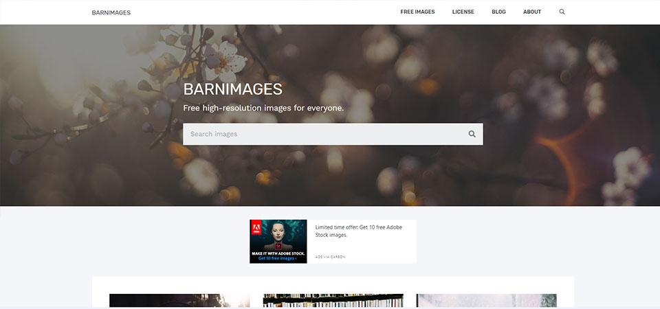 brainimages stock photos